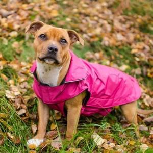 Bilde av Solid hundedekken med fleece (Rosa 2XL)