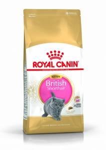 Bilde av Royal Canin Kitten British Shorthair