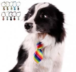 Bilde av Kule hunde- og katteslips