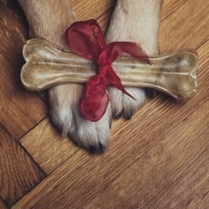 Bilde av Stort presset tyggebein til hund (22 cm)