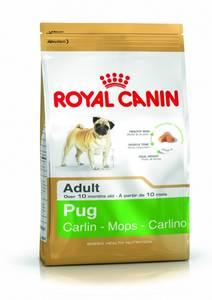 Bilde av Royal Canin Pug Adult