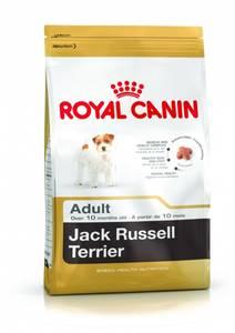 Bilde av Royal Canin Jack Russell Adult