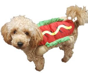 Bilde av Hotdog hundekostyme