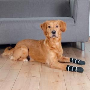 Bilde av Gummierte stripete hundesokker, 2pk