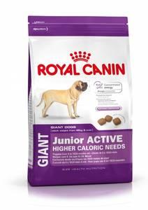 Bilde av Royal Canin Giant Junior Active 15kg