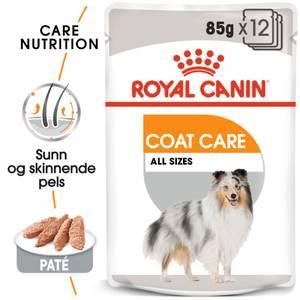 Bilde av Royal Canin Coat Care Wet, 12 x 85g