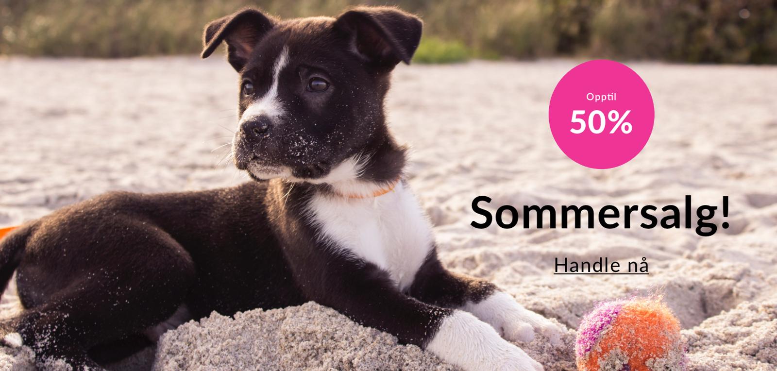 Tilbud på mengder av sommervarer til hund og katt!