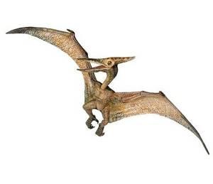 Bilde av Papo Pteranodon Miniatyrfigur