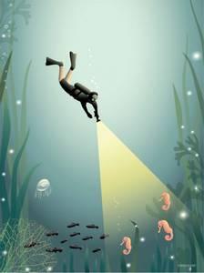 Bilde av VisseVasse The diver 30x40