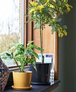 Bilde av Hay Botanical Family Pot L