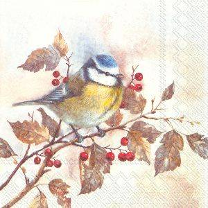 Bilde av Servietter lunsj Sweet Little Bird