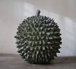 Bilde av Durian 30cm