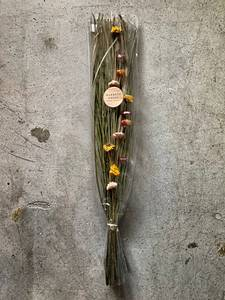 Bilde av Tørket blomst, mix farge