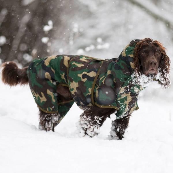 Bilde av Spirit Drying Coat for Dogs