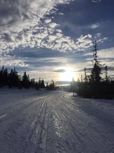 Bilde av Vintermotiv, 9