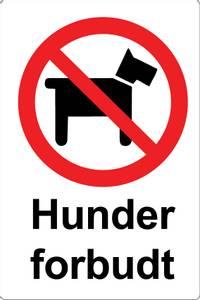 Bilde av 813 Hunder forbudt
