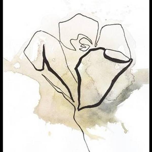 Bilde av Rose