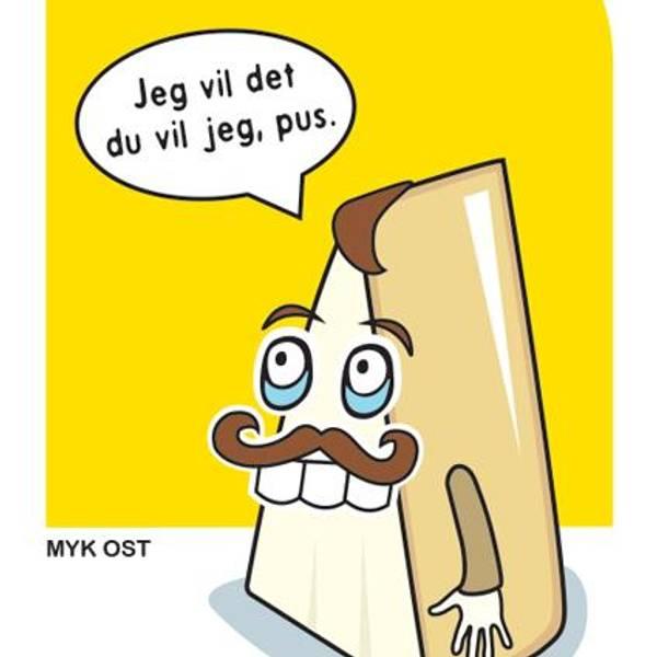 Bilde av Brødfjøl ost