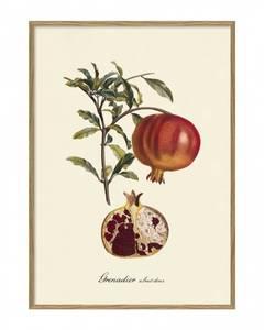 Bilde av Grenadier plakat 50x70 The Dybdahl Co.