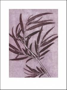 Bilde av Pernille Folcarelli Willow plum 30x40 trykk