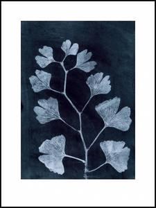 Bilde av Pernille Folcarelli Ginkgo dark ink 30x40 trykk