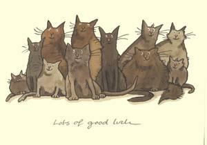 Bilde av Lots of Good Luck kort - Two Bad Mice