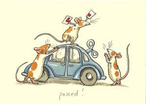 Bilde av Passed! kort - Two Bad Mice