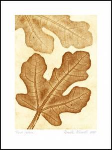 Bilde av Pernille Folcarelli Fig 2 ochre 50x70 trykk