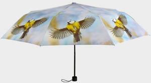 Bilde av Paraply Blåmeis