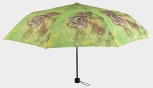 Bilde av Paraply Harepus