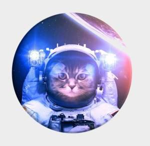 Bilde av Popsocket Astrokatt *UTSOLGT*