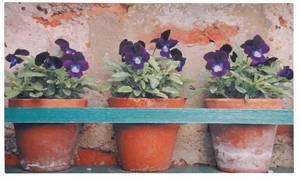 Bilde av Dørmatte Blomsterpotter