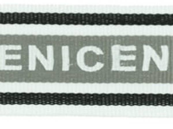 Bilde av Polyesterbånd, nice grå