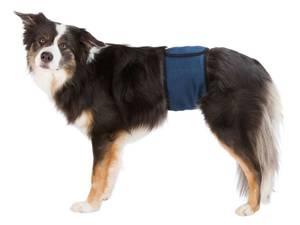Bilde av Magebelte til Hannhunder
