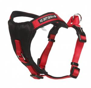 Bilde av Icepeak Prozone Super Harness Classic Red
