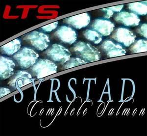 Bilde av Syrstad complete spiss