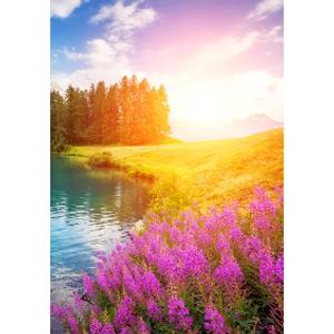 Bilde av Minikort Natur