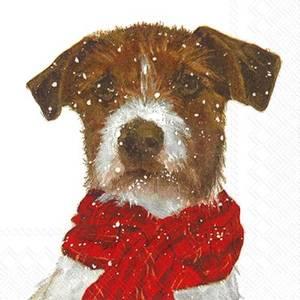 Bilde av Servietter Hund Lunch