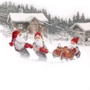 Bilde av Putetrekk med julemotiv 45x45