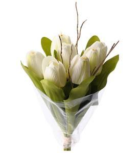 Bilde av Tulipanbukett hvit H 30 cm