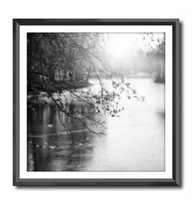 Bilde av Bilde m/sort ramme Natur
