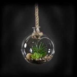 Bilde av Glassheng rund m/tau/plante
