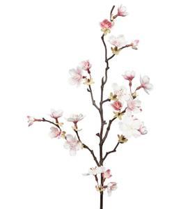 Bilde av Kirsebærblomst stilk H 60 cm