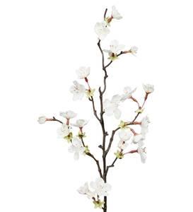 Bilde av Kirsebærblomst Hvit stilk H