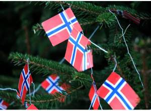 Bilde av Flaggremse 2 m a 12 flagg