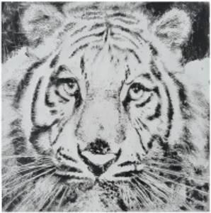 Bilde av Leretsbilde Tiger 100x100