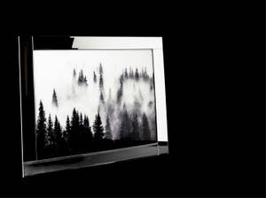 Bilde av Bilde skog glassprint med