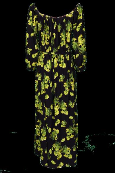 Bilde av Bupleurum kjole D52