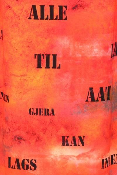 Bilde av Aagot oransje midikjole med