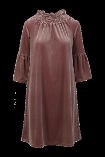 Image of Roberta dusty pink  velvet
